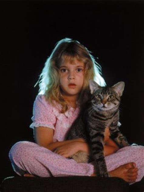 Cats Eye 1985 Cat S Eye Movie Poster 1985 Poster Buy Cat S Eye Movie Poster 1985 Posters At Iceposter Com