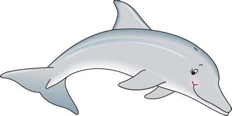 Dolphins Cliparts   The Cliparts