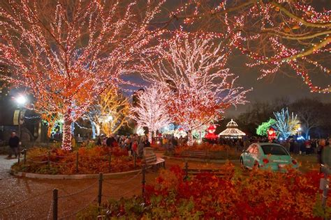 All Is Bright At These City And Suburban Holiday Light Lincoln Park Zoo Light Show