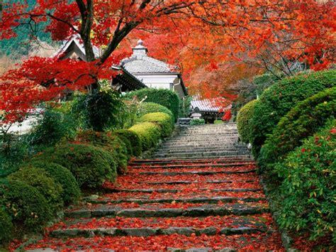 A And M Gardens by Scenarysnaps Scenary Snaps 441
