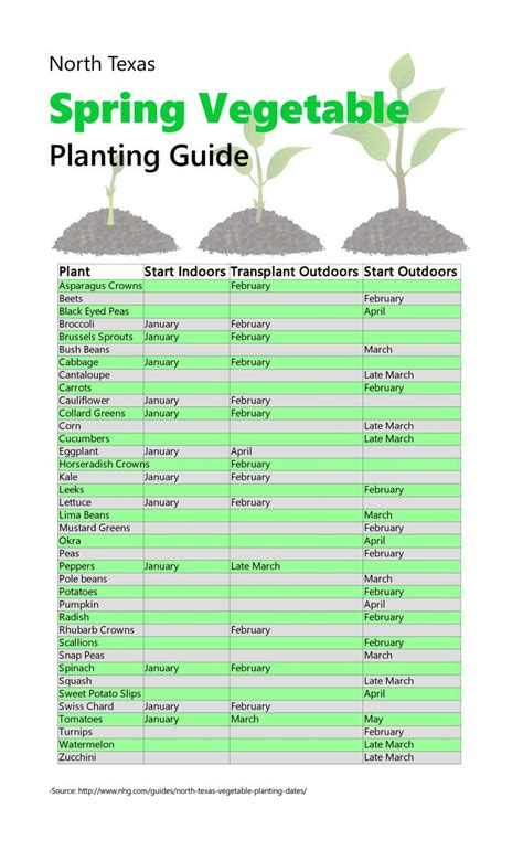 best 25 vegetable planting guide ideas on