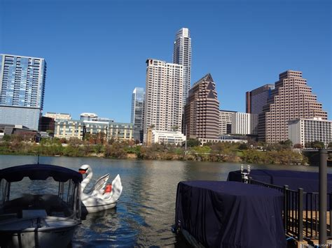 swan boats austin swan pedal boat in austin texas free photos of austin