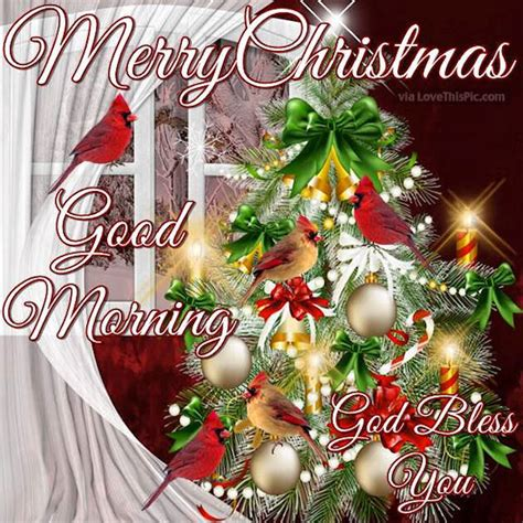 merry christmas good morning god bless pictures   images  facebook tumblr