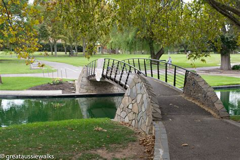 row boat hire adelaide walk or row in rymill park adelaide