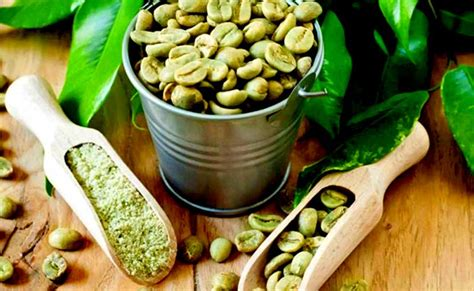 Berapakah Green Coffee jual green coffee murah green coffee