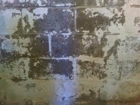 Damp On Interior Walls Damp Walls And Other Signs Of Basement Water Problems