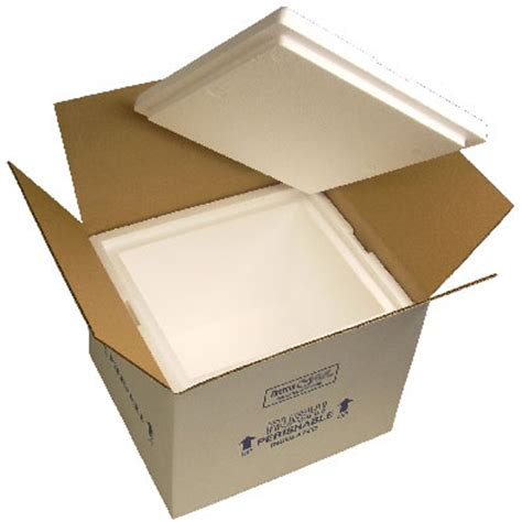 Sterofoam Box Package 8 x 6 x 9 reusable insulated styrofoam shipping boxes insulated shipping boxes and bags