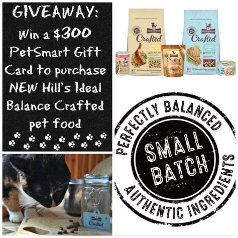 Petsmart Gift Card Balance - slow cooked cat food process and an inspiredbycrafted giveaway pawsitively pets
