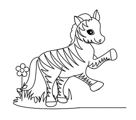 coloring pages of zebra crossing 40 zebra templates free psd vector eps png format
