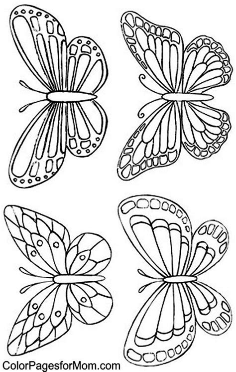 types of butterflies coloring pages best 25 butterfly embroidery ideas on pinterest