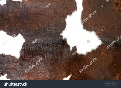 cow fur texture cow fur skin background texture stock photo 117354946