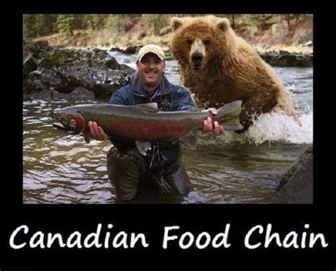 Funny Canadian Memes - funny canada memes