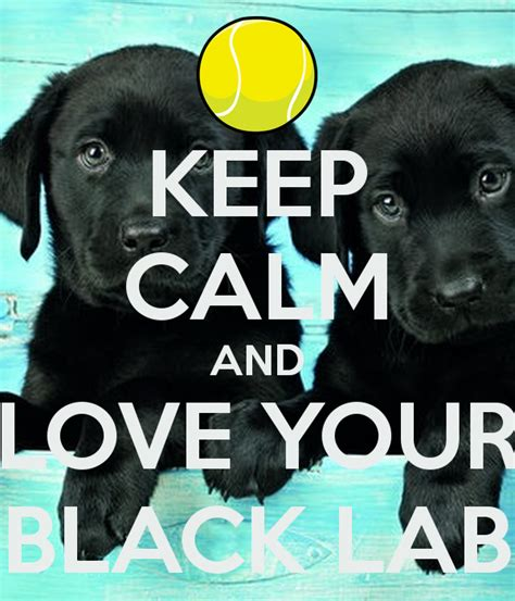 Keep Calm Black keep calm and your black lab keep calm and carry on