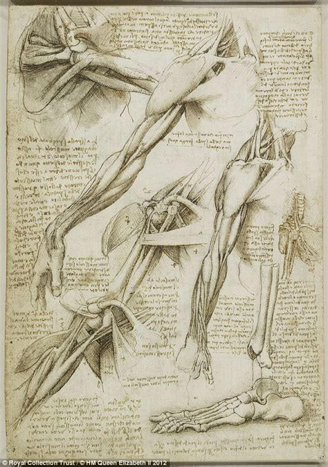 Sketches Leonardo Da Vinci by Leonardo Da Vinci S Drawings 100s Of Years Ahead Of His