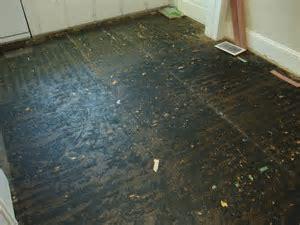 Asbestos linoleum flooring photos