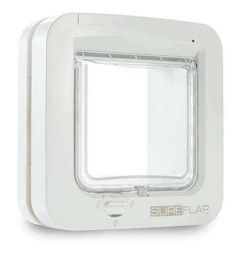 sureflap microchip cat door review must read
