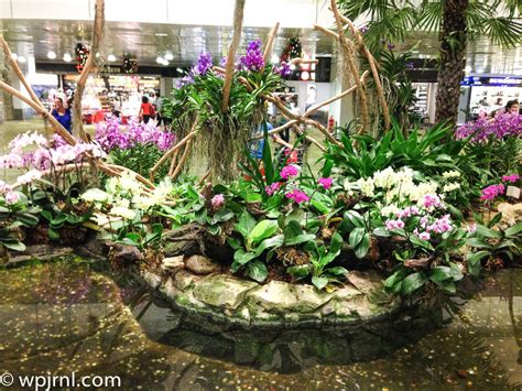 Orchid Garden by Orchid Garden Singapore Changi Airport