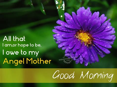 imagenes de good morning mom good morning wishes for mother pictures images page 2