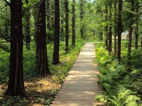 Beijing Botanical Garden China Top Tips Before You Go Beijing Botanical Garden