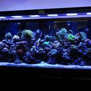 illuminazione a led acquario led acquario marino led acquario a led per acquario