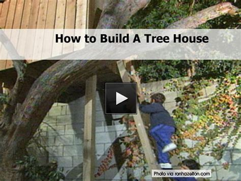 tips for building a house how to build a tree house