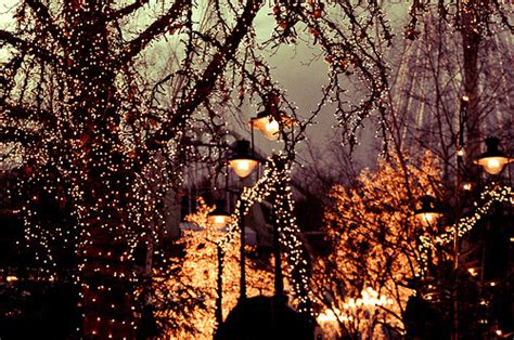 winter lights ral across the universe