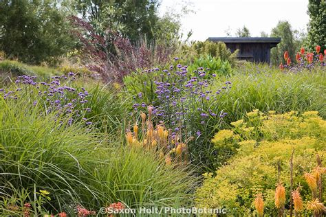 Prairie Lawn And Garden by 1000 Images About Prairie Planting Style On