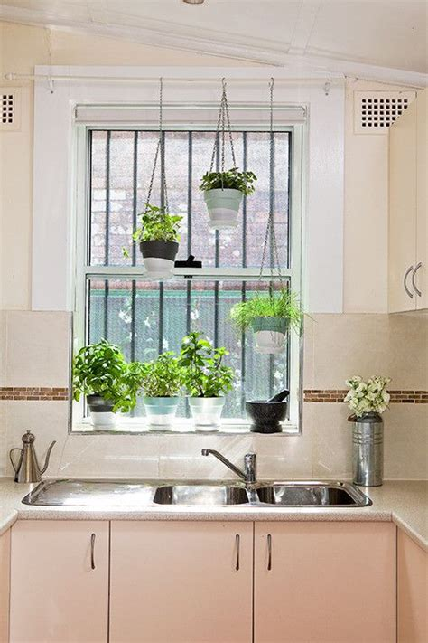 Hanging Herbs In Kitchen Window by Liven Up Your Home With A Beautiful Display Of Indoor
