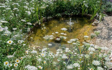 ponds  wild landscapes