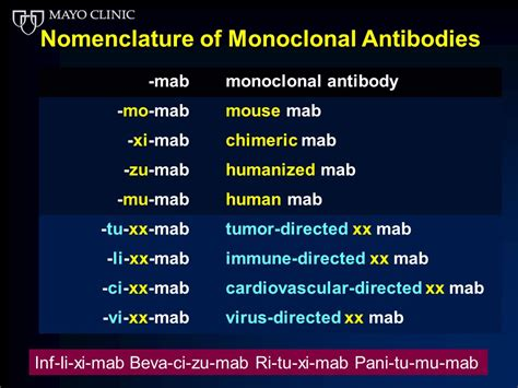 therapeutic monoclonal antibodies from bench to clinic theutic monoclonal antibodies from bench to clinic 28