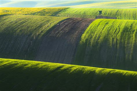 picturesque of green tsunami from moravia