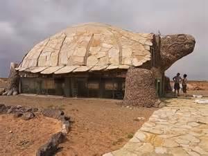 turtle house arquitectura