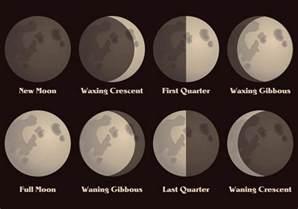 december 2016 moon phase calendar moon schedule free printable calendar templates
