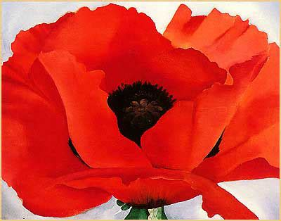 what color is poppy color of the week intodesign inc