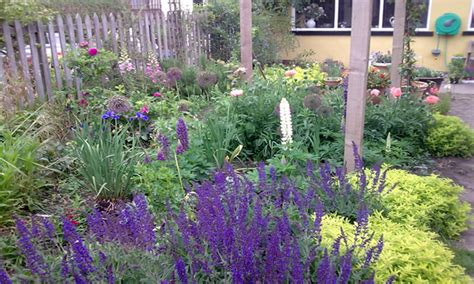 Small Cottage Garden Design Ideas Small Perennial Garden Designs Small Cottage Garden Design Small Cottage Layouts Mexzhouse