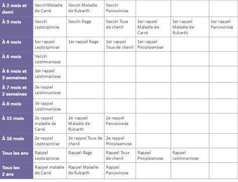Calendrier Vaccin Les Vaccins Chien Mieux Vaut Pr 233 Venir Que Gu 233 Rir