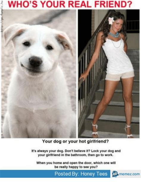 Hot Girlfriend Meme - e who s your real friend your dog or your hot girlfriend