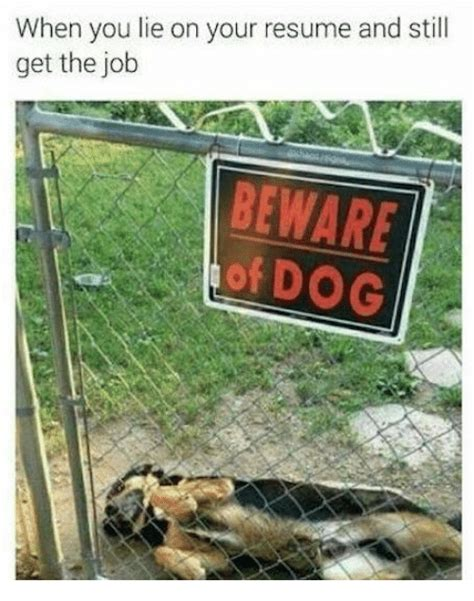when you lie on your resume and still get the beware of dank meme on me me