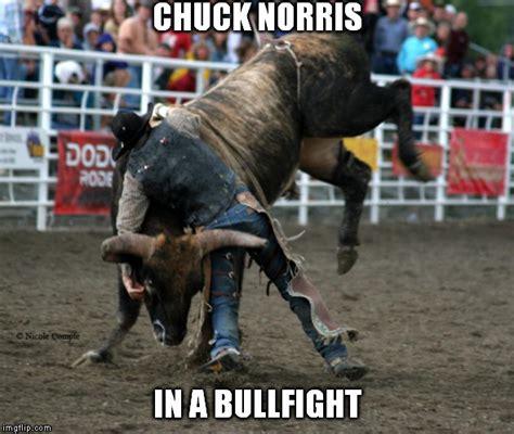 Bulls Memes - chuck don t take no bull imgflip