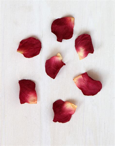 Paper Rose Petals   Red, Pink & Ivory White Petals