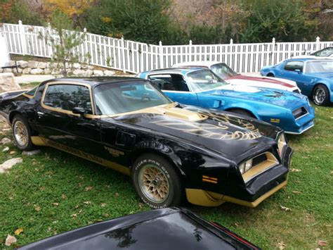 trans  rare macho ta  turbo black gold