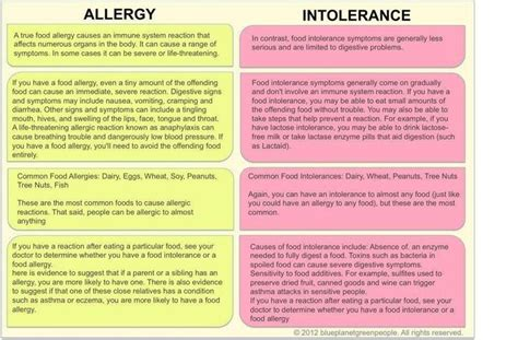 Food Intolerance Detox Symptoms by Food Allergy Vs Food Intolerance Easy Guide To