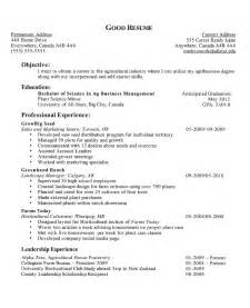 resume setup guide resume setup