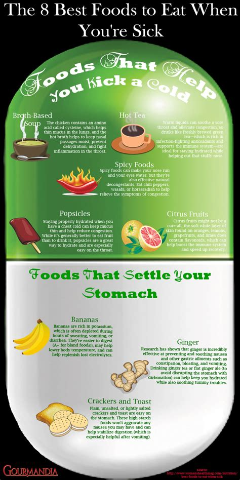 Pdf Your Food Is You Sick by 8 Healing Foods When You Are Sick Infographic