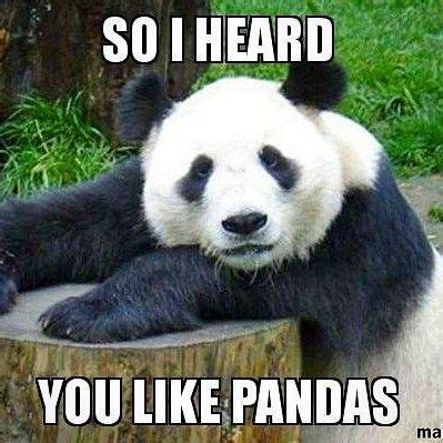 Cute Panda Memes - 3934 best images about osos panda me encantan on