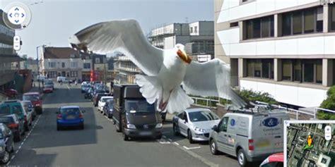 imagenes sorprendentes street view fotos sorprendentes en google street view noticias