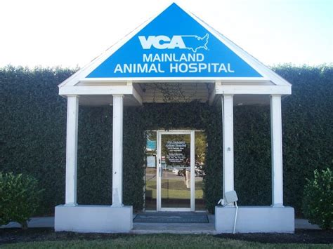 hospital near me vca mainland animal hospital coupons near me in city 8coupons