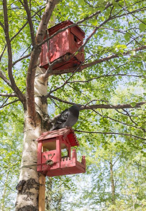best large capacity bird feeders bird cages