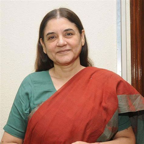 biography maneka gandhi environmentalist rubberwood furniture timber from rubber tree national