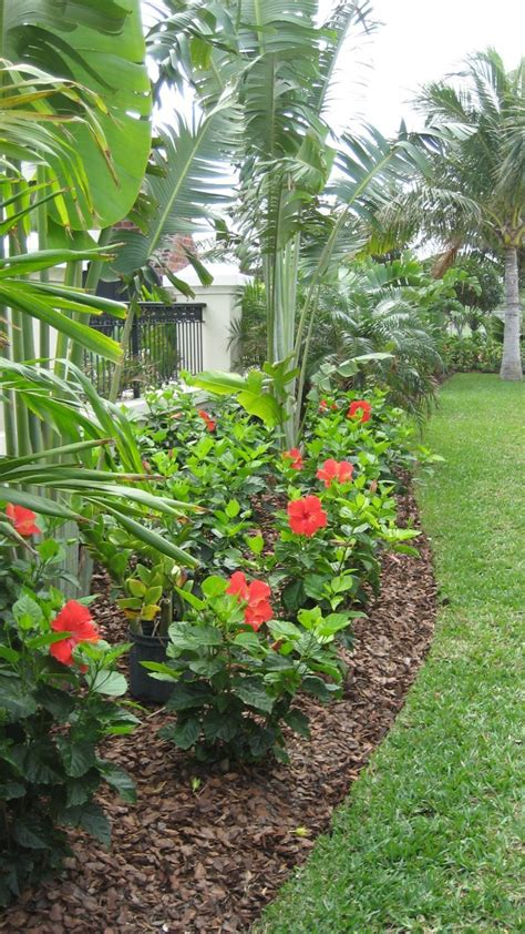 Garden Plant Ideas 25 Tropical Outdoor Design Ideas Flower Stands Hibiscus And Landscaping